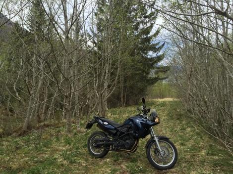In da woods